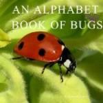 Bugs Alphabet Book